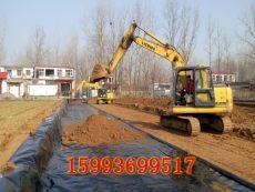 宜春吉安贛州什么地方賣蓮藕塘防漏水薄膜