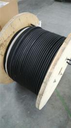 KGGP-19*1耐高温补偿电缆