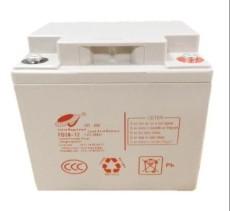 飞碟蓄电池天津有限公司