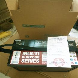大力神蓄电池MPS12-100 12v100ah正品价格