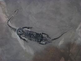 龍化石近期上門收購價格成交記錄