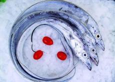 天津港冷凍帶魚進口企業如何操作清關報關