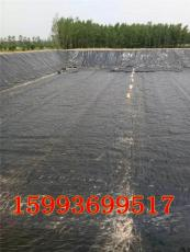 林州內黃哪里賣的有魚塘防水護坡黑塑料膜