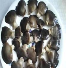 供應平菇 香菇 滑子菇 姬菇 鮑魚菇 杏鮑菇 白靈菇 菇條