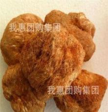 特級椴木猴頭菇 猴頭蘑 猴菇菌 野生 猴頭王批發