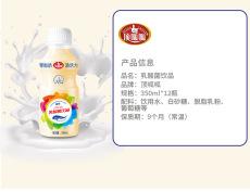 瓶裝乳酸菌350ML12瓶OEM貼牌加工廣東廠家