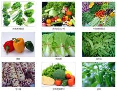 黃江蔬菜配送公司黃江食堂蔬菜配送服務公司