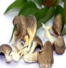 真姬菇 姬菇 秀珍菇 粗纤维 低脂肪