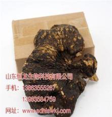 山东省济南市野生灵芝供应商 聊城恒龙自产自销优质灵芝