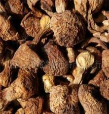 中国银耳之乡特级野生仔松茸菌产地批发