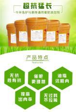 肉牛催肥絕招-催肥飼料添加劑