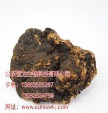 陕西省西安市薄树芝市场价格 山东灵芝供应商