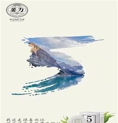 京上电子商务(在线咨询)、姜力、姜力招商