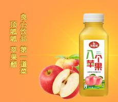 蘋果醋飲料450ML15瓶裝ODM貼牌代加工廣東