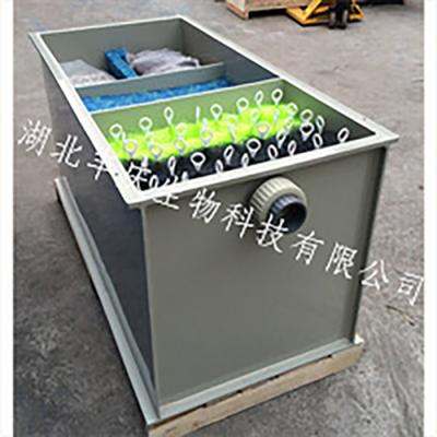 循环水养殖设备  箱式生物过滤器