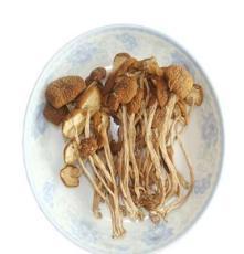 厂家直销茶树菇 野生干茶树菇 安徽特产 食用菌批发