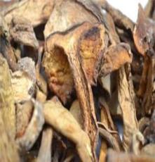 牛肝菌批发美味牛肝菌/牛肝菌上品纯天然绿色食品野生牛肝菌