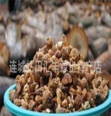 姬松茸 巴西蘑菇 5公斤起批