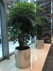 盆栽绿植租赁免费设计定时更换