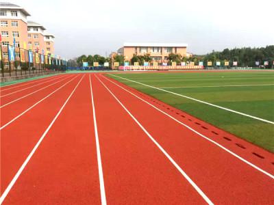 济南市章丘区第二实验小学硅PU球场