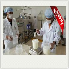 工產酸奶設備-大型羊奶生產線-牦牛奶生產線