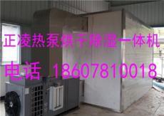 四川/重慶/湖南辣椒熱泵烘干機