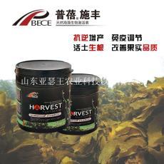进口海藻精 果顿普蓓海藻生物激活素
