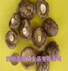 出口蘑菇 西峽香菇干貨 新鮮蘑菇