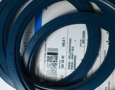 德國CFW耐壓油封規格
