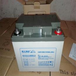 DJM1250S理士蓄电池 广西/总代理