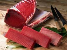 印度金枪鱼进口企业如何操作清关报关