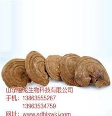 广东省广州市赤灵芝食用功效与作用