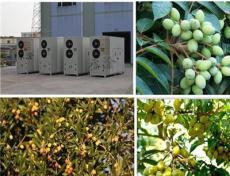 橄榄烘干机供应商-烘干机-永淦