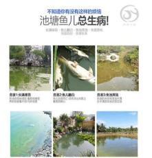 长沙专业承接鱼池过滤改造