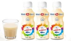 乳酸菌饮料厂家ODM贴牌代加工350ML15瓶装