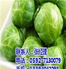 提供蔬菜配送_厦门地三鲜