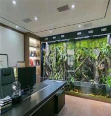 长沙/湘潭/株洲/益阳/岳阳生态雨林缸、植物墙、大型鱼缸植来植趣