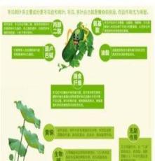 铁道游击队故乡微山湖荷叶茶养生茶,纯天然茶饮品