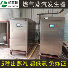 帕莱顿全自动变频蒸汽发生器天然气液化气
