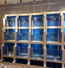 株洲海鲜池制作厂家,专业鱼池设备制作就找锦源水族