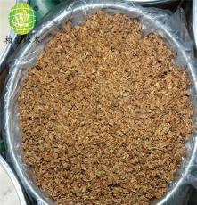 大量柏鑾辣木花木桶裝包郵大特價美容養顏佳品
