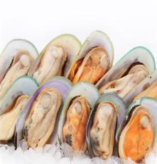 進口新西蘭青口貝,半殼,大號中號, 冷凍水產品,酒店食材