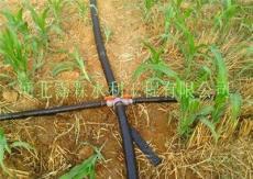 供应山东地区农田微喷-微喷带设备