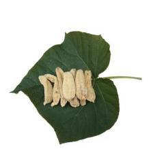 大别山优质农产品干天麻 产地直供滋补食品天麻干 绝对滋补佳品