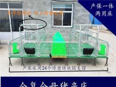 双体母猪产床猪用床养猪设备厂家
