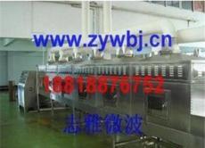 無線微波設備生產廠家/廣州哪家有賣微波干燥設備