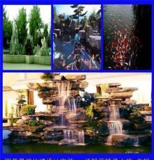 池塘噴泉假山造景