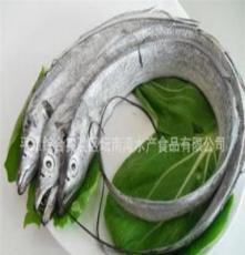优质水产品--带鱼 冰冻鲜带鱼
