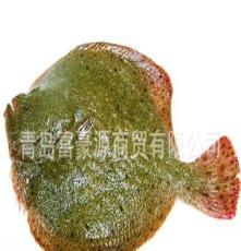 批发鲜活多宝鱼 价格优惠 图