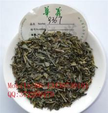 chunmee tea green tea 9367 眉茶綠茶秀眉出口茶紅茶花茶